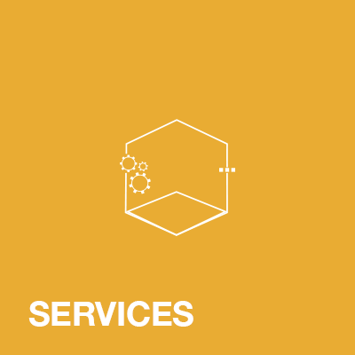 neonsee services